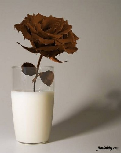 Rose&lt;3 - chocolate Photo