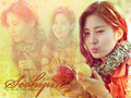 SNSD Seohyun - seohyun-girls-generation wallpaper