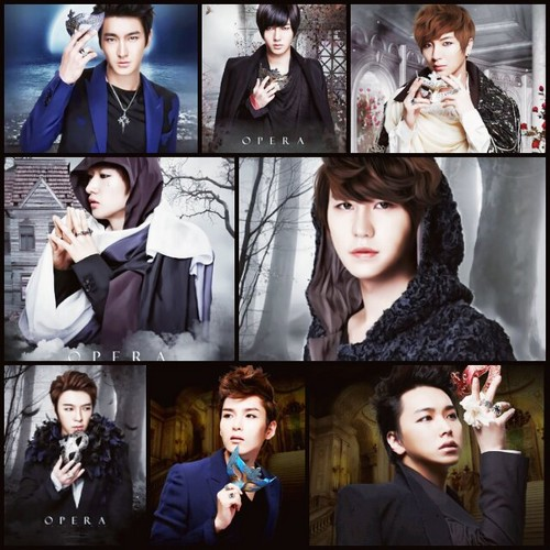 SUPER JUNIOR OPPA - super-junior Fan Art