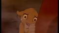 Sad Simba
