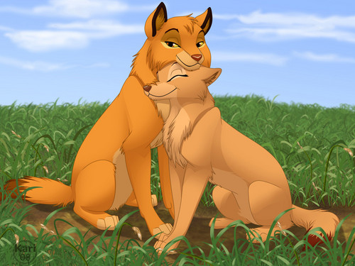 Hevenly pack/pride wallpaper titled Simba and Nala as wolves
