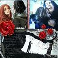 Snape & Lily x x