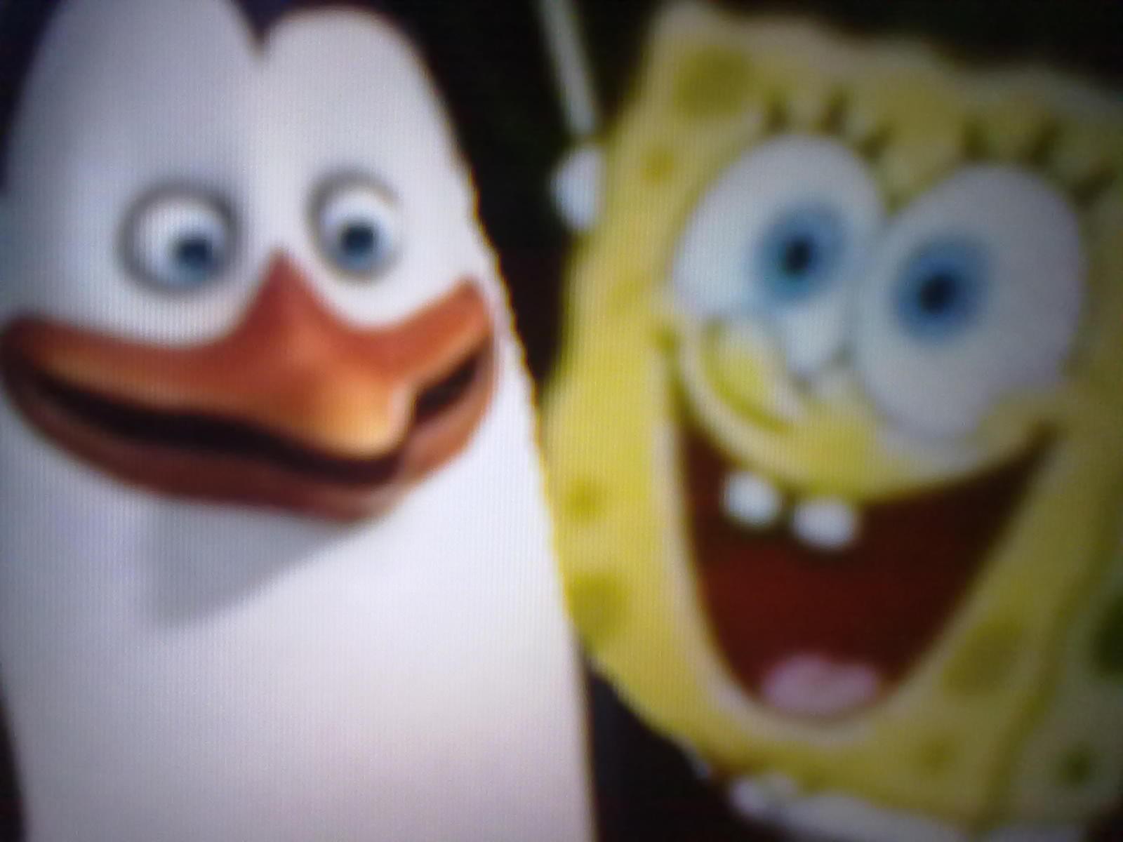 SpongeBob and Kowalski