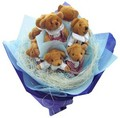 Teddy bears - stuffed-animals photo