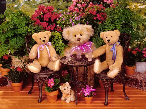 Stuffed Animals images Teddy bears HD wallpaper and background photos