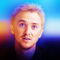 Tom Felton images Tom Felton wallpaper and background photos