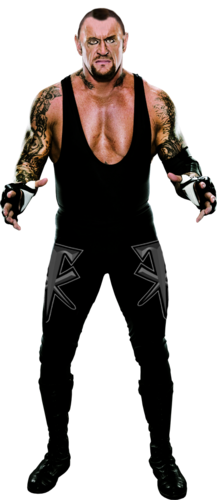 WWE wallpaper probably containing a leotard and tights called Undertaker