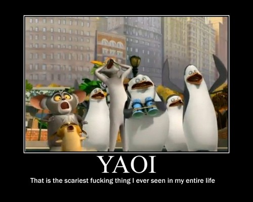 Penguins of Madagascar wallpaper entitled Yaoi