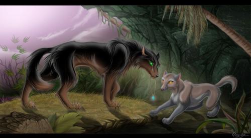 a Rawak serigala, wolf