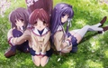 clannad and clannad after story - lubasakura wallpaper