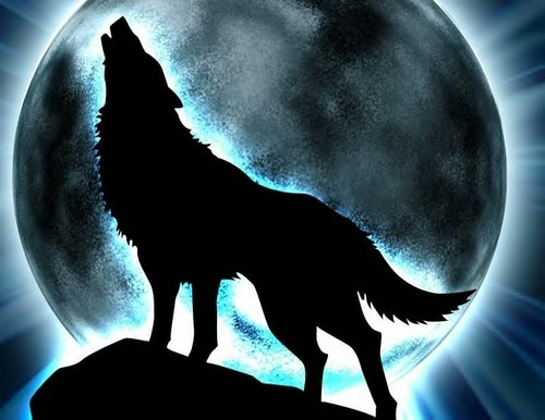 lobos Of the Beyond fondo de pantalla called glowing moon