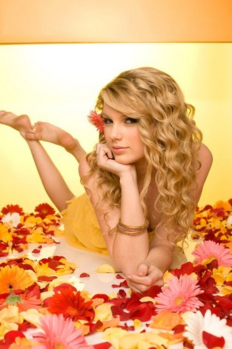 Taylor Swift wallpaper probably containing a bouquet called taylor