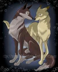 भेड़िया members