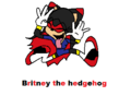 xD britney - britney-the-hedgehog photo
