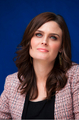 'The Perfect Family' Press Conference [May 8, 2012] - emily-deschanel photo