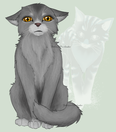 :( poor gray