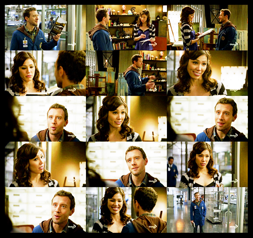 When do angela and hodgins hook up - Fandom powered by wikia