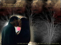 AT THE END - damon-and-elena wallpaper