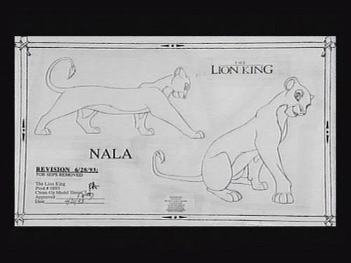 Adult Nala art script