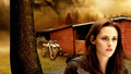 Bella Swan Wallpapers - bella-swan wallpaper
