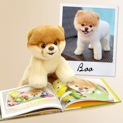 Boo book & Boo toy & Boo picture
