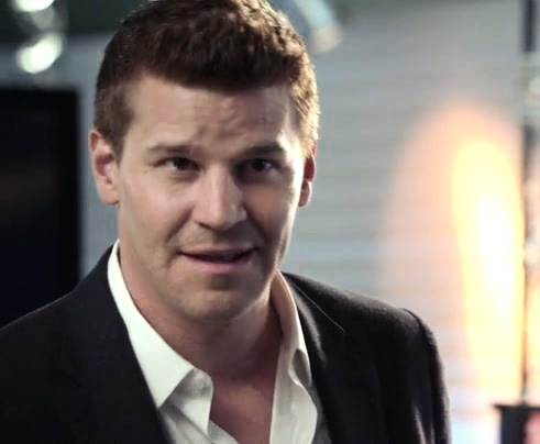 Seeley Booth achtergrond with a business suit and a suit entitled Booth