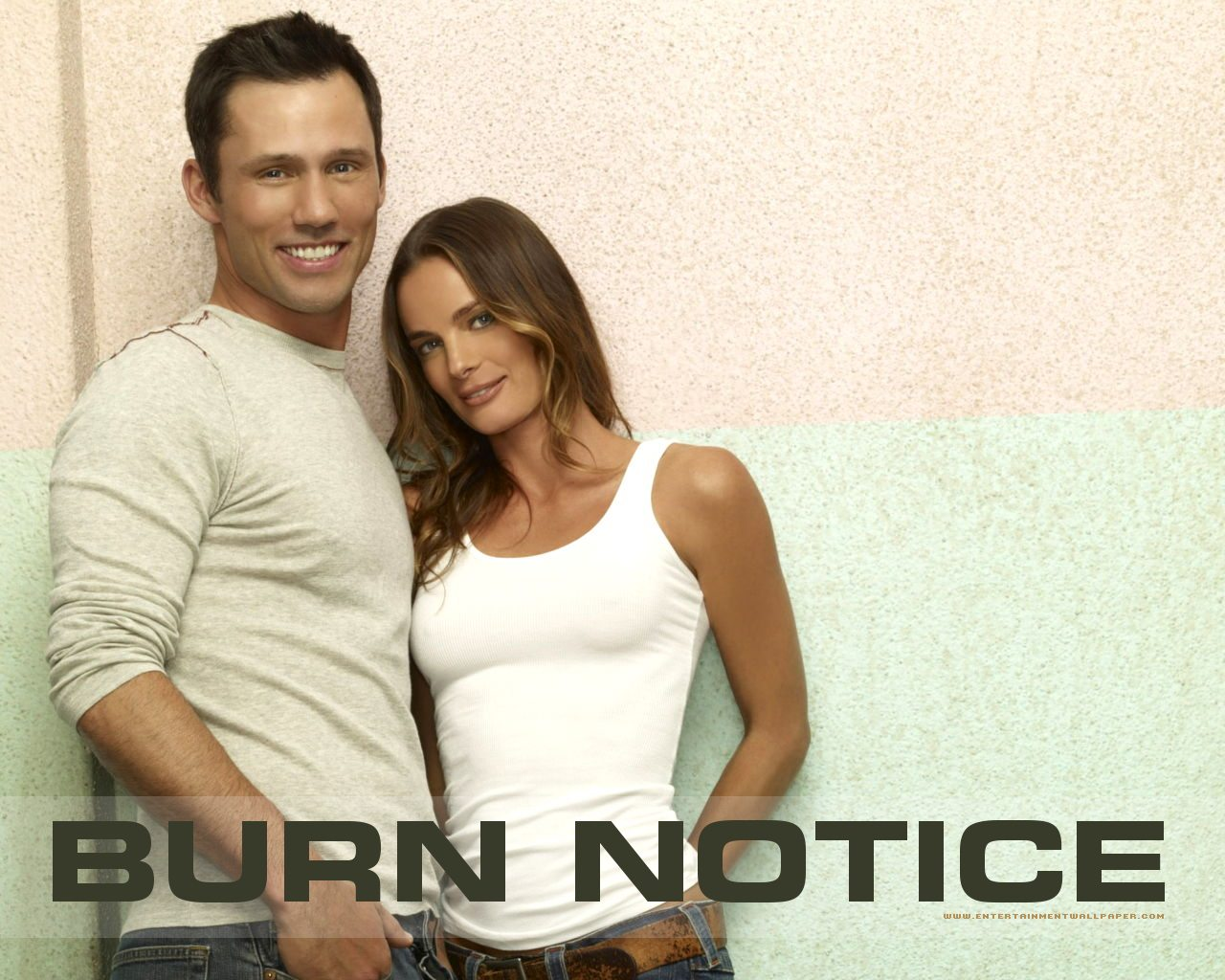 burn notice fiona