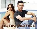 Burn Notice <333 - burn-notice wallpaper