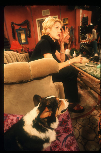 Dharma & Greg wallpaper probably with a pembroke entitled Dharma & Greg
