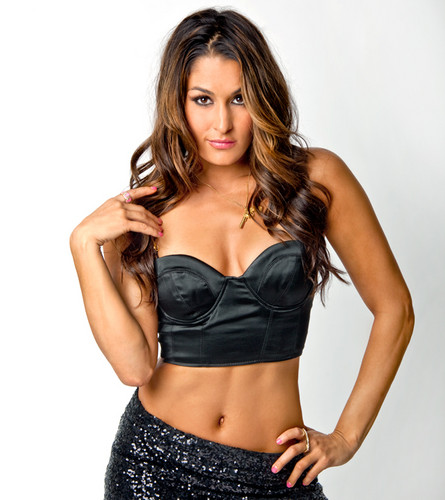 Divas On Demand - wwe-divas Photo