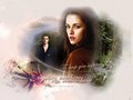 Edward & Bella NM - twilighters wallpaper