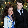 Edward & Bella Twilight Dolls