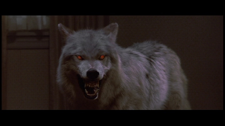 Wolves evil wolf