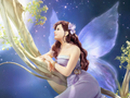 Fairy Wallpaper - yorkshire_rose wallpaper