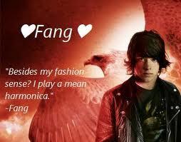 Fang and Max