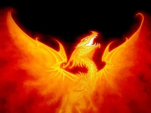 api, kebakaran Duuude!:D