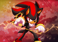 Flow - shadow-the-hedgehog fan art