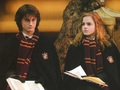 Harry and Hermione ♥ - harmonyforever wallpaper