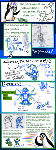 How to draw PoM style-Penguins:Part One: general anatomy and skeletal structure.
