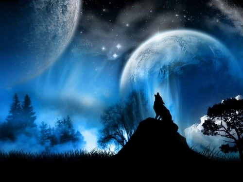 Wolves wallpaper entitled Howling Wolf Wallpaper