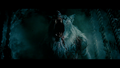 I'M ''LYCAN' THIS! BY MRF - horror-movies photo