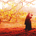 Jane Eyre - period-drama-fans icon