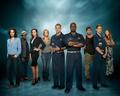 Last Resort cast wallpaper - last-resort photo