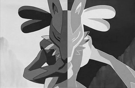 Lucario - Black and White