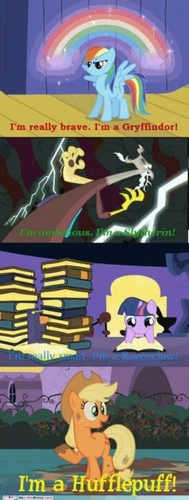 MLP Meets HP