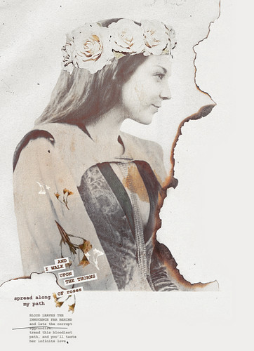 Margaery Tyrell wallpaper possibly with a newspaper and anime entitled Margaery Tyrell
