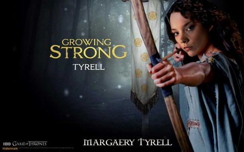 Margaery Tyrell wallpaper entitled Margaery poster