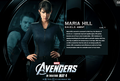 Maria Hill - the-avengers photo