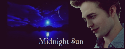 Midnight Sun wallpaper probably containing a concert and a portrait entitled Midnight Sun