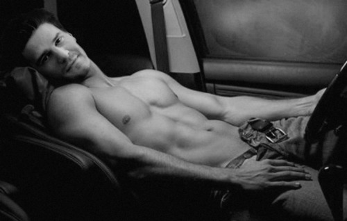 Naked David *-* - david-boreanaz Photo